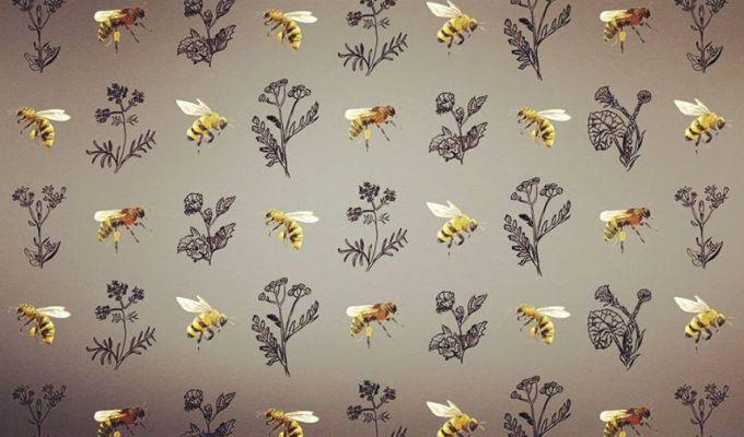 Les Miels de la Ferme apicoleMosaïque